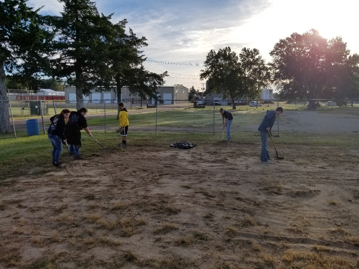 Removing weeds in Volleyball Courts