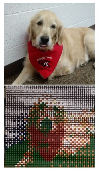 Shelby Mosaic